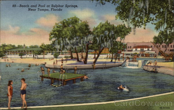 Beach and Pool at Sulphur Springs Tampa Florida