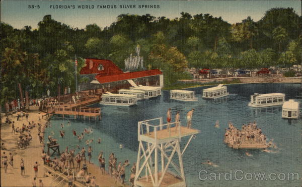Florida's World Famous Silver Springs