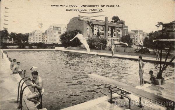 Swimming Pool University Of Florida Gainesville Fl