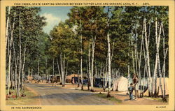 Fish Creek State Camping Grounds Postcard