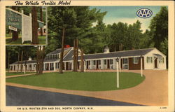 The White Trellis Motel