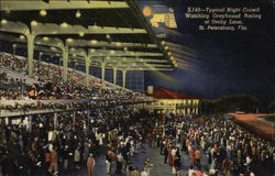 Typical Night Crowd Watching Greyhound Racing at Derby Lane Postcard