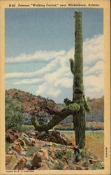 "Famous ""Walking Cactus"""