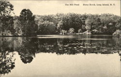The Mill Pond - Long Island