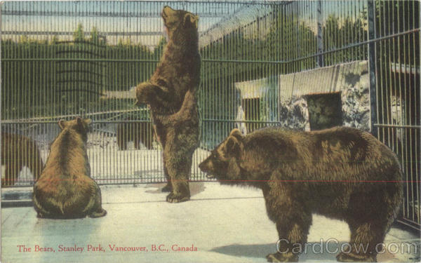 The Bears, Stanley Park Vancouver Canada
