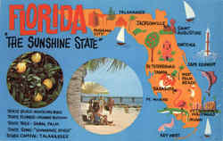Florida The Sunshine State Postcard