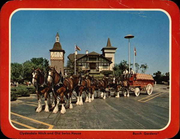 Clydesdale Hitch and Old Swiss House, Busch Gardens Florida