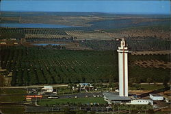 Aerial View Citrus Tower