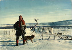 Lapp in Traditional Costume with Reindeer