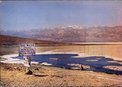 Bad Water, Death Valley National Monument Large Format Postcard