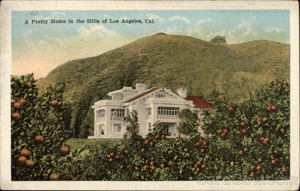 Pretty Home in the Hills Los Angeles California