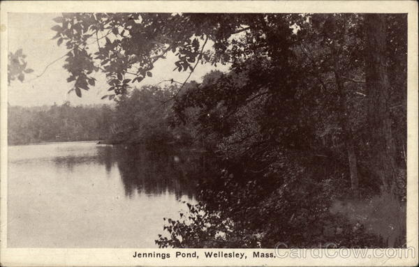 Jennings Pond Wellesley Massachusetts