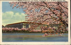 Bureau of Engraving and Printingm at Cherry Blossom TIme
