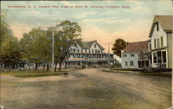Catskills Mts. View of Main St, showing Irvington Hotel
