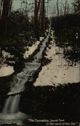 """The Cascades"", Laurel Park"