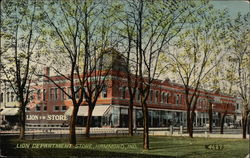 Lion Department Store Postcard