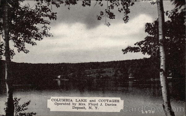 Columbia Lake and Cottages Deposit New York