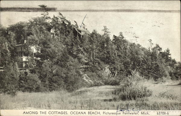 Among the Cottages, Oceana Beach Pentwater Michigan