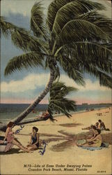 Life of Ease Under Swaying Palms, Crandon Park Beach