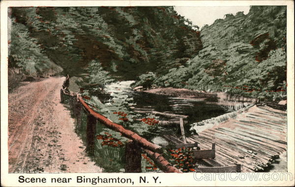 River Scene Binghamton New York