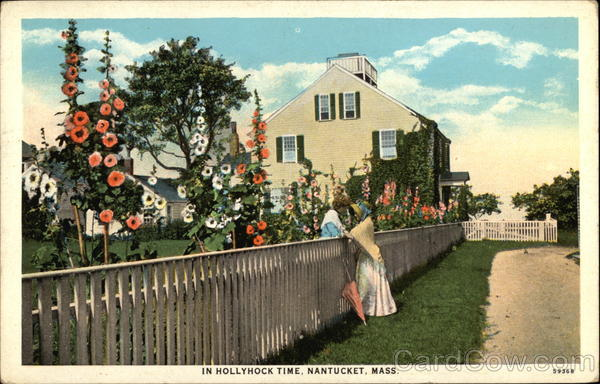 View in Hollyhock Time Nantucket Massachusetts