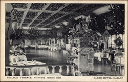 Peacock Terrace, Nationally Famous Roof, Baker Hotel