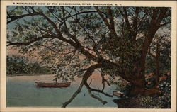 A Picturesque View of the Susquehanna River Postcard