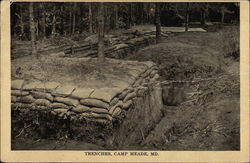 Trenches at Camp Meade