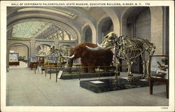 State Museum, Education Building - Hall of Vertebrate Paleontology