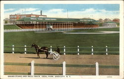 Grand Stand and Race Track, Ideal Park