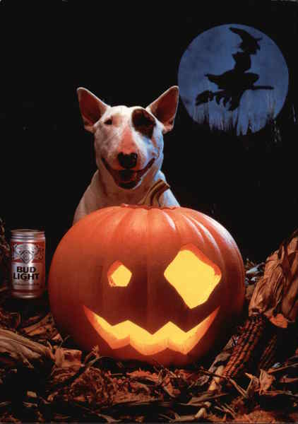 spuds mackenzie bud light halloween modern 1970 s to present