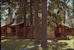 Cabin Accommodations Postcard