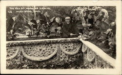 The Reverend at Work on Grotto Postcard