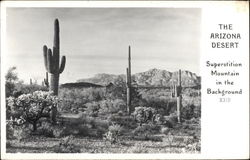 The Arizona Desert - Superstition Mountain in the Background