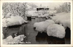 Snow Scene on Lake Postcard