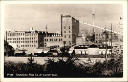 Soundview Pulp Co