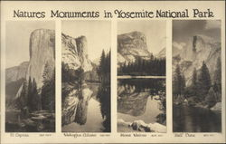 Natures Monuments in Yosemite National Park