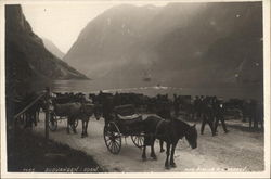 Fjord and Horse-Drawn Carts