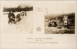 Royal Kennels
