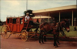Stagecoach and Horse, Western Hills Lodge