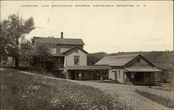 Jenkins' and Reynolds' Stores Sanitaria Springs New York