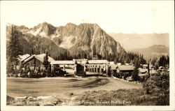 Paradise Cabins and Tatoosh Range