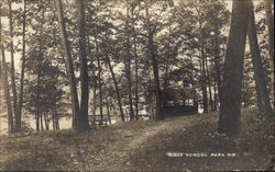 Trees in Bible School Park Postcard