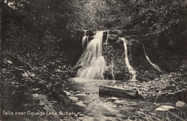 Falls near Oquaga Lake Outlet New York