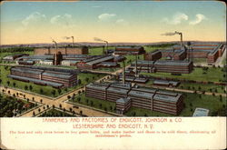 Tanneries and Factories of Endicott, Johnson & Co