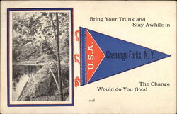 Bring your trunk and stay awhile in Postcard