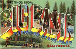 Greetings from Big Basin Redwood State Park - Large Letter