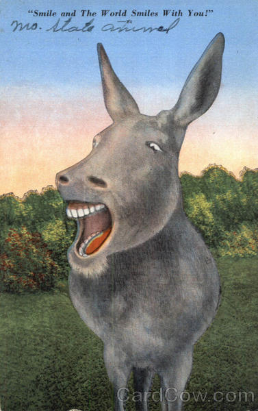Smile And The World Smiles With You Donkeys