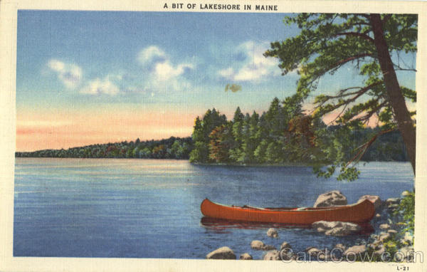 A Bit Of Lakeshore In Maine Scenic