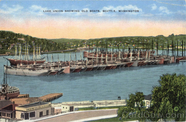 Lake Union Showing Old Boats Seattle Washington
